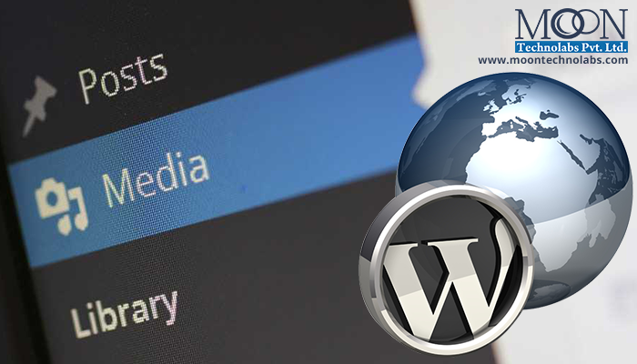 The Most Possible Risk Factors Faced by Wordpress Developers