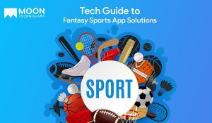 guide to fantasy sports app solutions