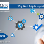 Understanding the importance of web applications